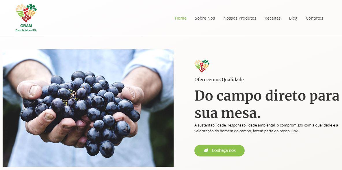 Criação do Site Gram Distribuidora S.A